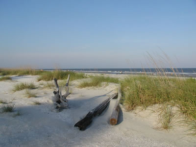 Hilton Head Island Beaches