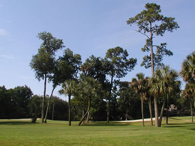 Hilton Head Island Golf Courses